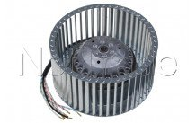 Novy - Motore cappa destro. 4 velocità - 691178