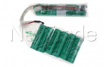 Electrolux - Batterij,kit,ergo rapido, ag9x - 4055132304